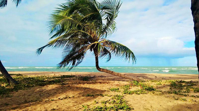 1 melhores praias de maceio